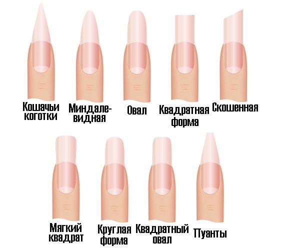 Таблица по формам ногтей